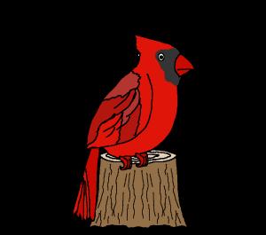 ets bottlecap.cardinalbird