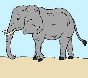 ets bottlecap.elephant