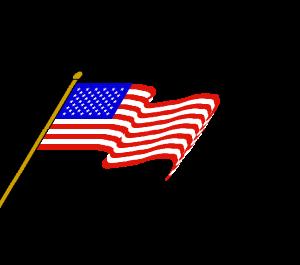 ets bottlecap.flag