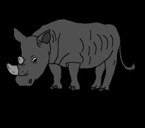 ets bottlecap.rhinoceros