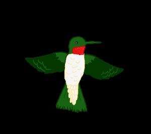 ets bottlecap.rubythroatedhummingbird
