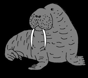 ets bottlecap.walrus