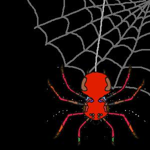 sr spider